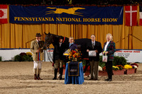 "221 Grand Amateur-Owner Ht 3'3"" Champ"