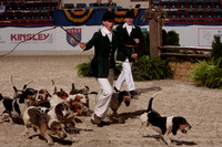 Terrier Races, Horn Blowing Cham., Parade of Hounds