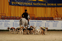 Parade of Foxhounds, Terrier Races, & Horn