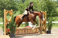 Beginner Equitation