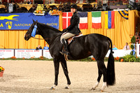 91 Second Year Green Under Saddle