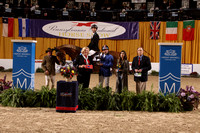 208-209 Lead Rider Open Jump&Leading Lady